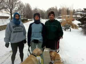 Snow Run with Dogs